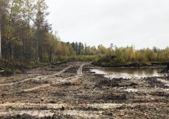 Площадка будущего строительства грибного комплекса